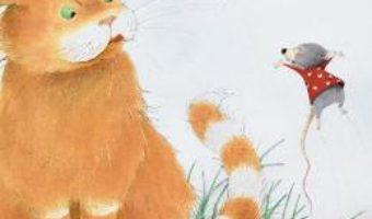 Cartea Dora si Tim, o prietenie neasteptata – Toni Steiner, Eve Tharlet (download, pret, reducere)