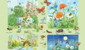 Cartea Plansa: Fauna si flora din campie (download, pret, reducere)