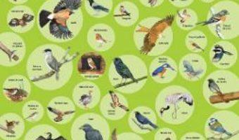 Cartea Plansa: 50 de pasari (download, pret, reducere)