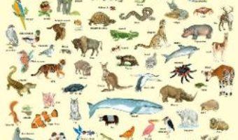 Cartea Plansa: 100 de animale (download, pret, reducere)