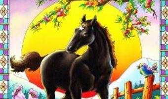 Cartea Black Beauty (download, pret, reducere)