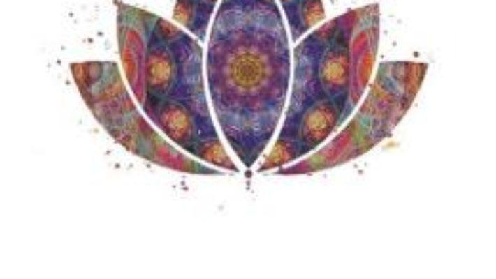 Cartea Mindfulness Si Optimizarea Comportamentului Profesional – Roxana F. Alecu, Maria Gemescu (download, pret, reducere)