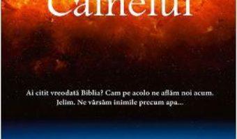 Cartea Constelatia cainelui – Peter Heller (download, pret, reducere)