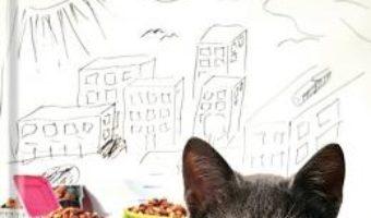 Cartea Povestea pisoiului gasit la gunoi – Bogdan Stoica (download, pret, reducere)