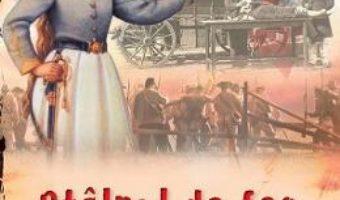 Cartea Stalpul de foc – Lynn Austin (download, pret, reducere)