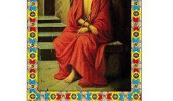 Cartea Povestire dureroasa – Sfantul Dimitrie al Rostovului (download, pret, reducere)