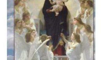 Cartea Reflectii duhovnicesti si interviuri – Argatu V. Ioan (download, pret, reducere)