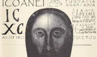 Cartea Noi si icoana – Sorin Dumitrescu (download, pret, reducere)