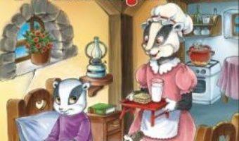 Cartea Bursucul incapatanat – Claudia Cojocaru (download, pret, reducere)