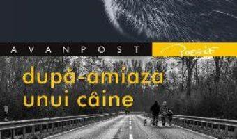 Cartea Dupa-amiaza unui caine – Grigore Soitu (download, pret, reducere)