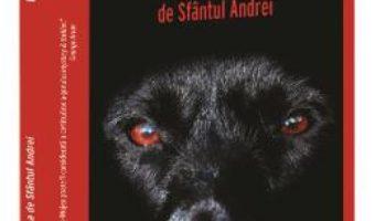 Cartea Noaptea de Sfantul Andrei – Oana Stoica-Mujea (download, pret, reducere)