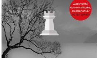 Cartea Singurul om – Andrew Gross (download, pret, reducere)