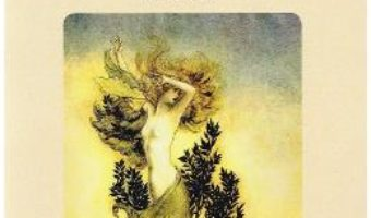 Cartea Asteptand la Arlechin – Iolanda Miculescu (download, pret, reducere)