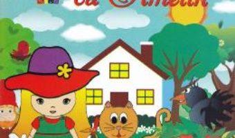 Cartea Intamplari cu Amelin – Ana Ardeleanu (download, pret, reducere)