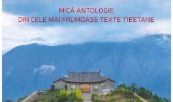 Cartea Drumuri spirituale – Matthieu Ricard (download, pret, reducere)