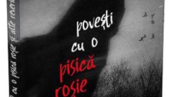 Cartea Povesti cu o pisica rosie si alte reverii – Sorin Lucaci, Paul Suciu (download, pret, reducere)