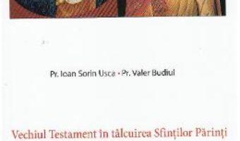 Cartea Vechiul Testament in talcuirea Sfintilor Parinti XVII: Iezechiel, Daniel – Ioan Sorin Usca, Valer Budiul (download, pret, reducere)