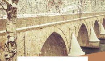 Cartea E un pod pe Drina… – Ivo Andric (download, pret, reducere)