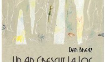 Cartea Un an crescut la loc – Dan Breaz (download, pret, reducere)
