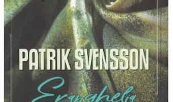Cartea Evanghelia tiparilor – Patrik Svensson (download, pret, reducere)
