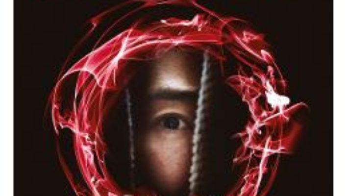 Cartea Labirintul diavolului – John Saul (download, pret, reducere)