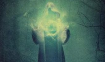 Cartea Antrenamente spirituale. Ucenicul vrajitor – Doru Cica (download, pret, reducere)