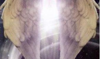 Cartea Terapii cu lumina – Doru Cica (download, pret, reducere)