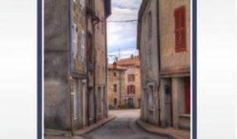 Cartea Strada Magnoliei si alte aventuri – Adrian Iancu (download, pret, reducere)
