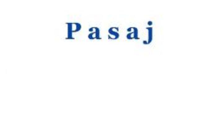 Cartea Pasaj – Andrei Zanca (download, pret, reducere)