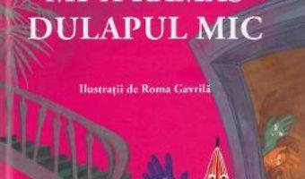 Cartea Mi-a ramas dulapul mic – Simona Sava (download, pret, reducere)