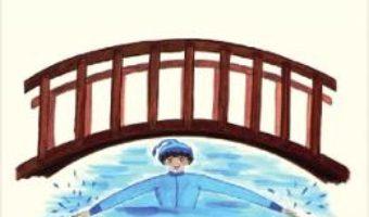 Cartea Podul – Brandusa Vranceanu (download, pret, reducere)