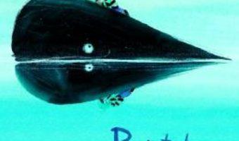 Cartea Baiatul si balena – Linde Faas (download, pret, reducere)