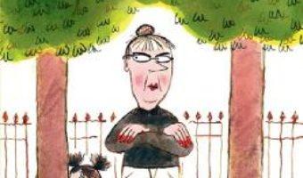 Cartea Nesuferita doamna Bebe – Agnes Desarthe, Louis Thomas (download, pret, reducere)