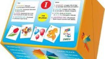 Cartea Set fise educative: imagini, cifre, litere. Vol. I – Ala Bujor (download, pret, reducere)