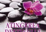 Cartea Atingerea destinului – Alina Cosma (download, pret, reducere)