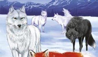 Cartea Foxcraft Vol.3: Magul – Inbali Iserles (download, pret, reducere)