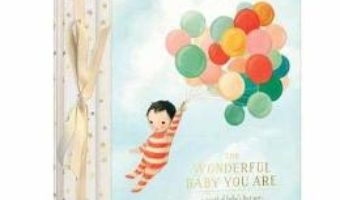 Cartea The Wonderful Baby You Are: A Record of Baby's First Year – Emily Winfield Martin (download, pret, reducere)