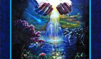 Cartea Izvorul cel vesnic viu – Chico Xavier (download, pret, reducere)