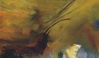 Cartea Lumina si intunericul – Matei Agachi (download, pret, reducere)