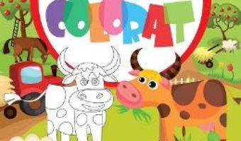 Cartea 128 desene de colorat 2 (download, pret, reducere)