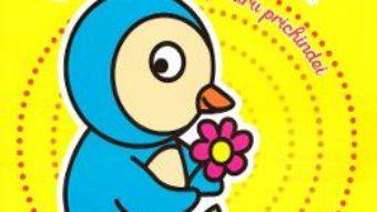 Cartea Carte de colorat pentru prichindei (download, pret, reducere)