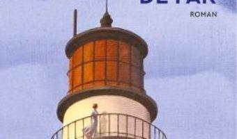 Cartea Sotia paznicului de far – Karen Viggers (download, pret, reducere)