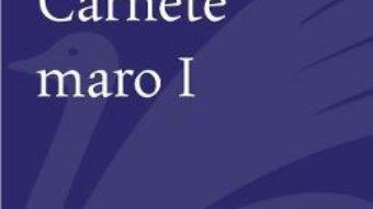 Cartea Carnete maro 1 – Aurel Dumitrascu (download, pret, reducere)