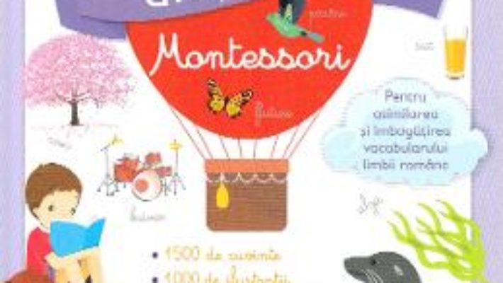 Cartea Primul meu dictionar Montessori – Larousse (download, pret, reducere)