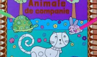 Cartea Coloreaza dupa numere. Animale de companie (download, pret, reducere)