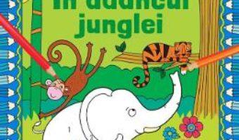 Cartea Coloreaza dupa numere. In adancul junglei (download, pret, reducere)