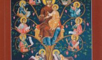 Cartea Carte de rugaciuni cu acatistele zilelor saptamanii (download, pret, reducere)