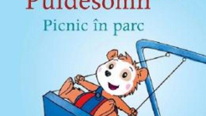 Cartea Bobo Puidesomn. Picnic in parc – Markus Osterwalder (download, pret, reducere)