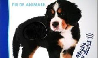 Cartea Bebe invata. Ascultati, copii, oare cine poate fi? Pui de animale (download, pret, reducere)