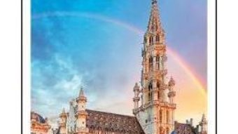 Cartea DK Eyewitness Top 10 Brussels, Bruges, Antwerp and Ghent (download, pret, reducere)